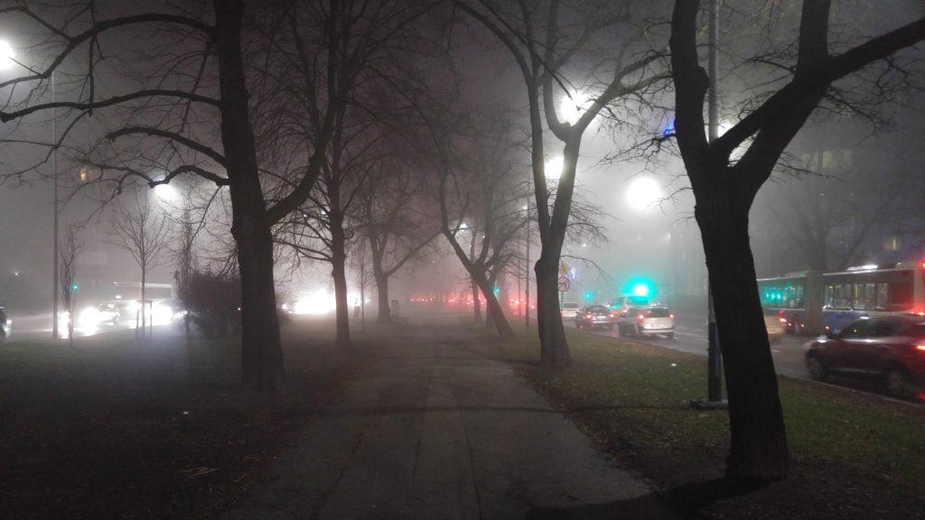 Smog wawelski